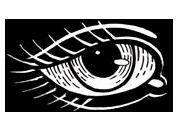Golden Eye Tattoo & Gallerie